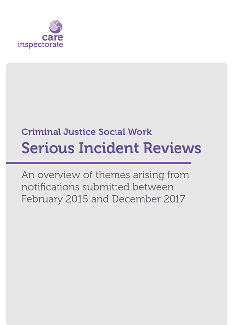 Serious Incident Reviews: An overview of themes arising from notifications submitted between February 2015 and December 2017 image