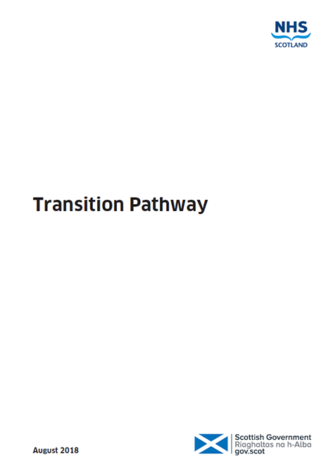 Transition Care Planning - Action 21: Transition Pathway image