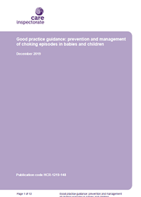 Good practice guidance: prevention and management of choking episodes in babies and children image